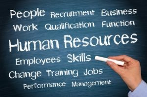 23744840 - human resources